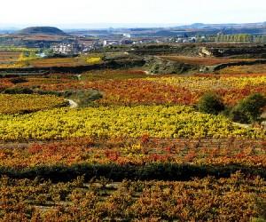 Spanish regions 5