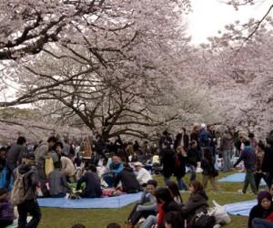 March festivals (part 3)