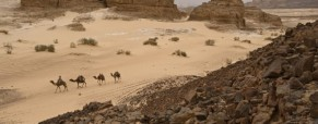 Egypt: The Sinai Peninsula