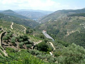 european-travel-destinations-douro-valley