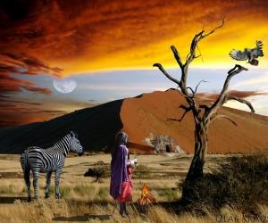The ultimate Safari trip to Africa