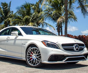 Drive in Miami Like a Champ