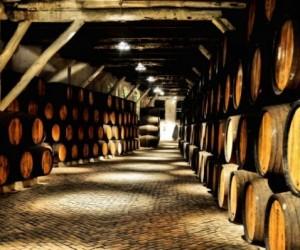 A wine route through Portugal