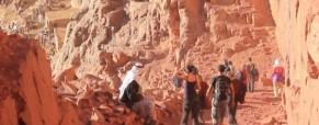 A pilgrimage to Mount Sinai