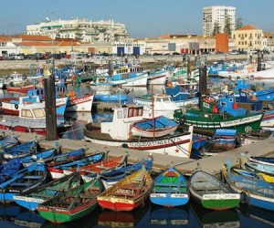 What to see and do in Setubal